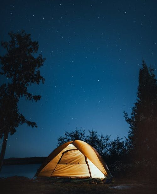 Starry night in the forrest tent camping