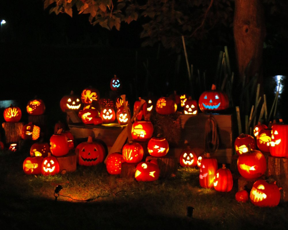 the Great Pumpkin Glow brings in a refreshed and comfortable fall experience