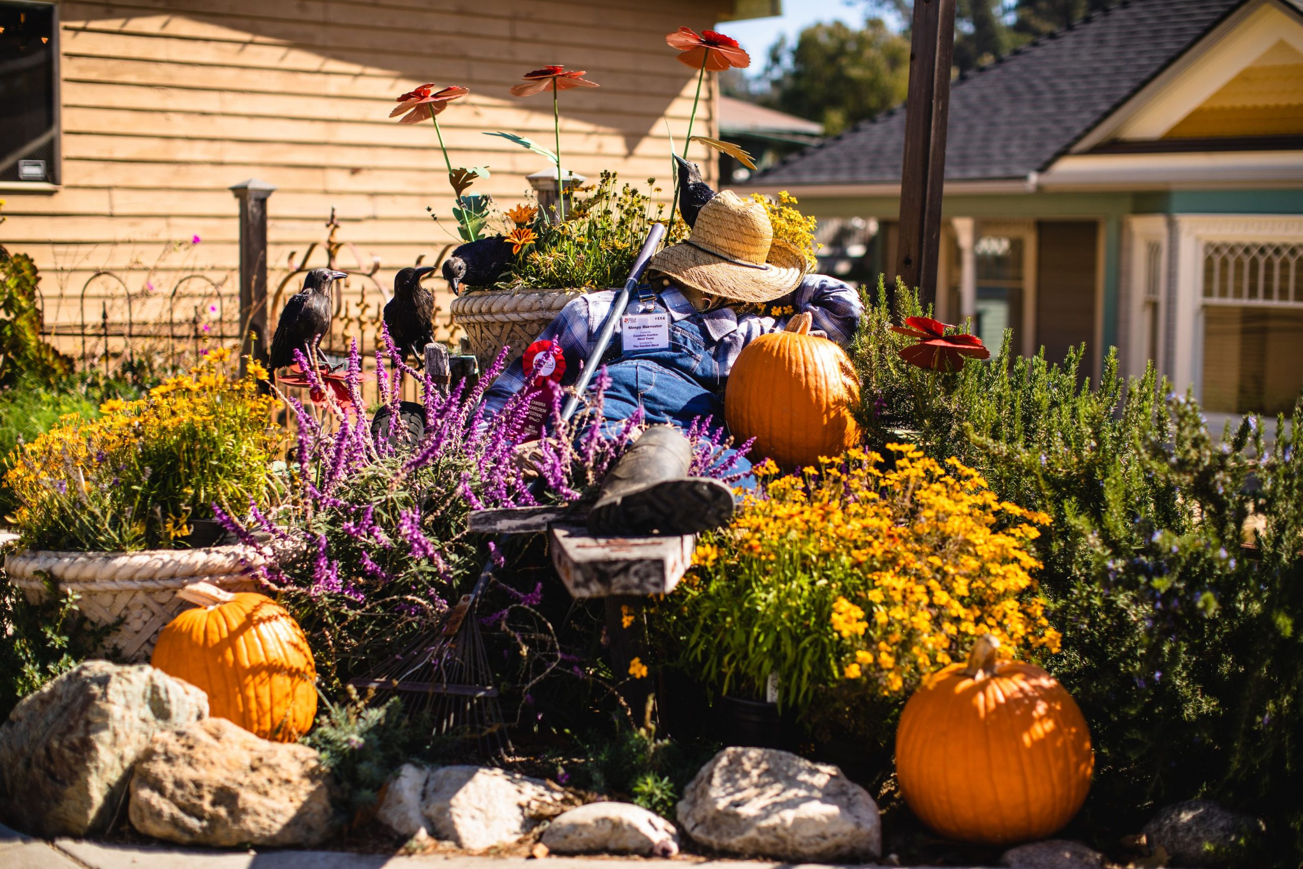 The Scarecrow Festival In The USA And Other Parts Of The World