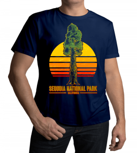 Have fun with California trips this year with California t-shirt!