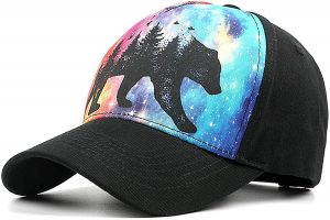 The most memorable thing about California hat is Grizzly Bear