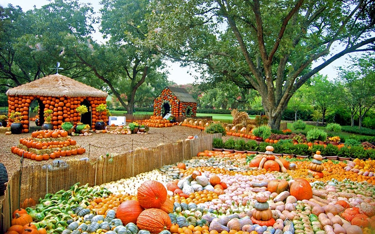 Tickets For Your Visit To Autumn At The Arboretum