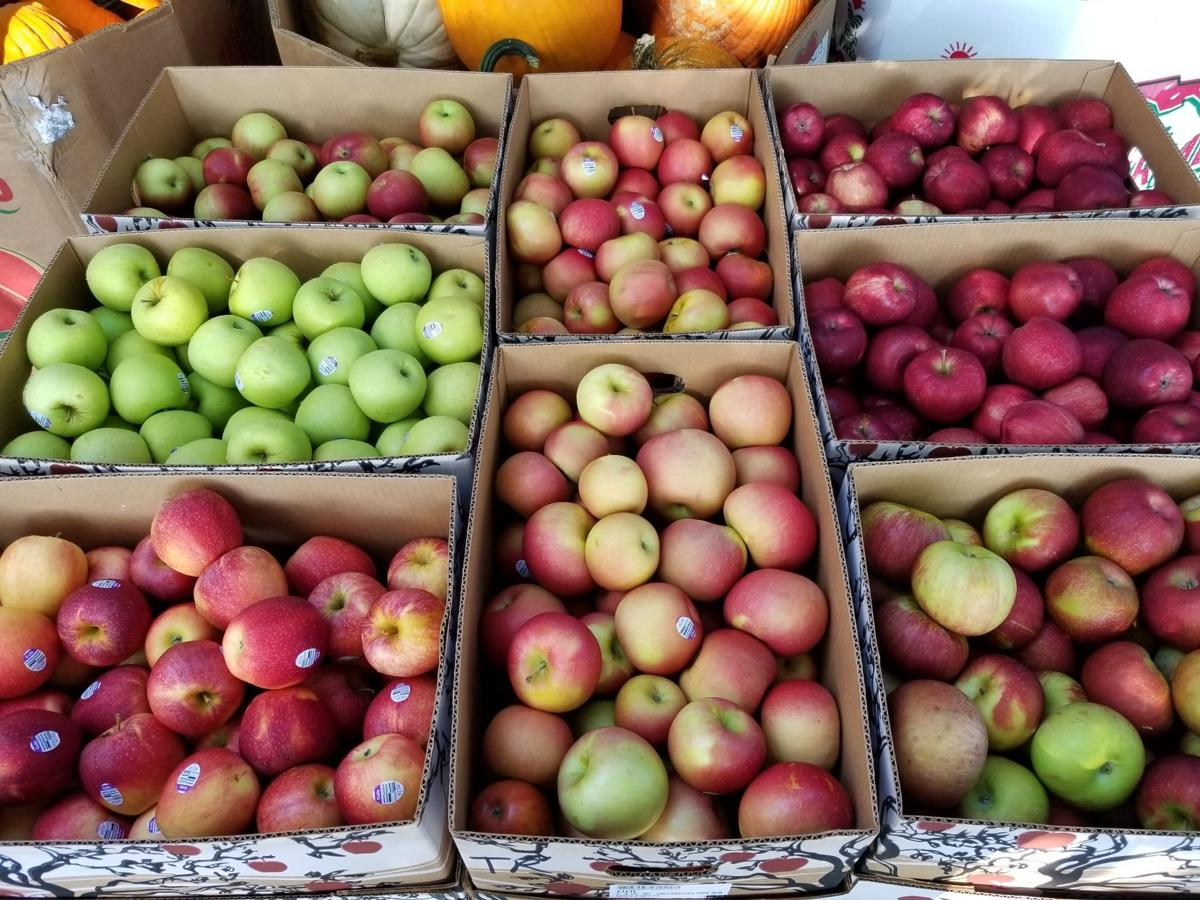 The History Of The Unicoi County Apple Fest