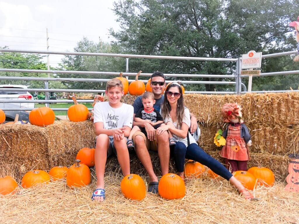 the Harvest Festival in Redland farm offers all kinds of traditional activities