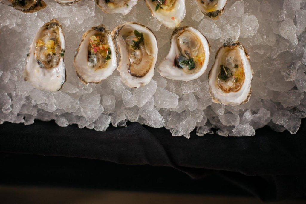 Maine OysterFest Sessions