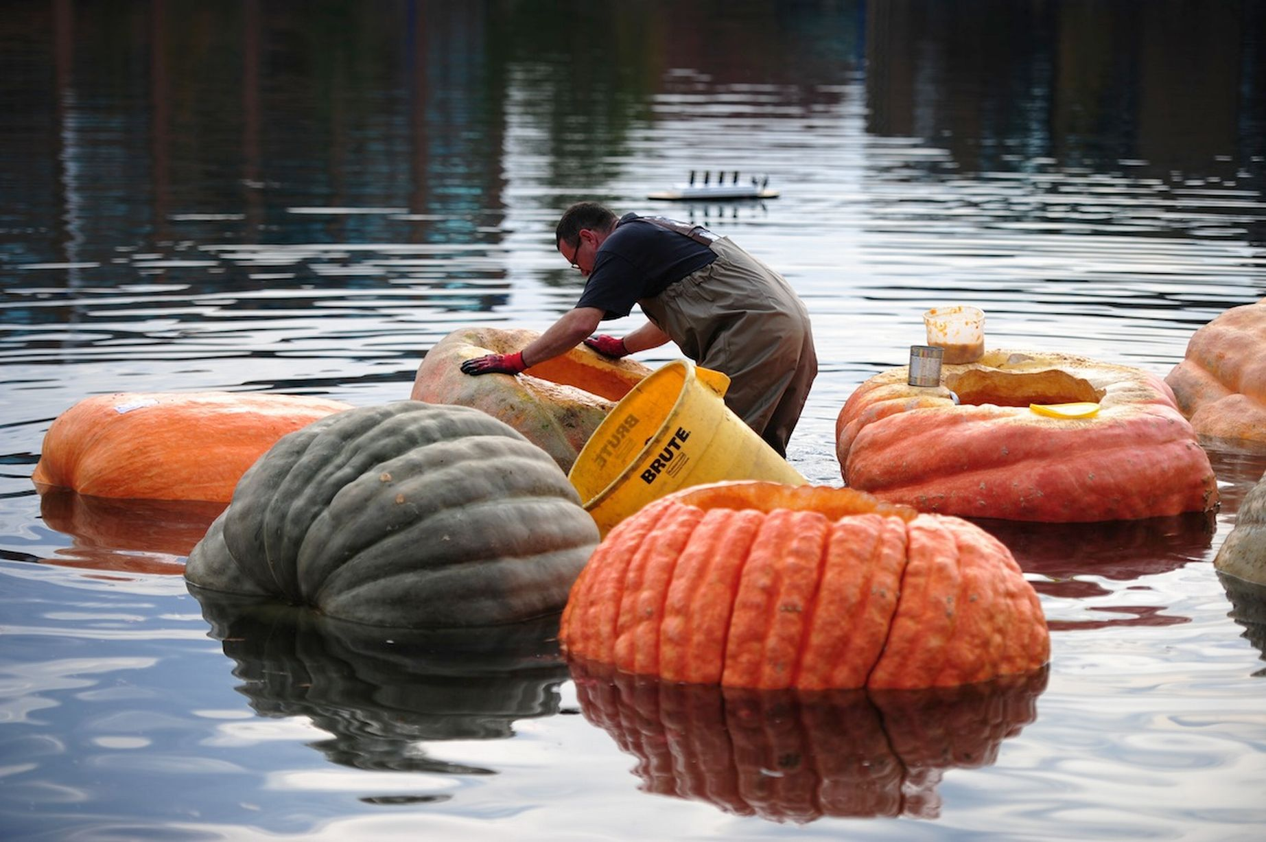 The Pumpkin Regatta is held at the Tualatin Lake of the Commons