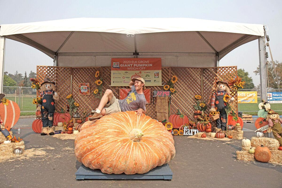 Pumpkins and Pints is a special event of the event